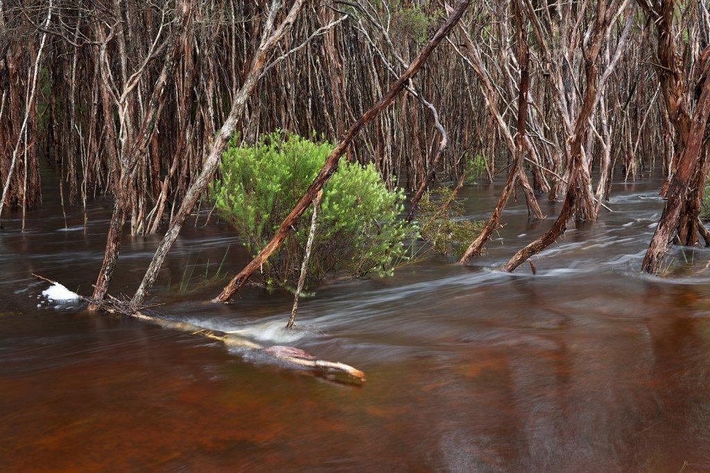 Überschwemmung nach langen Regenfällen