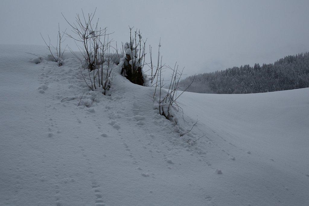 Schneekugeln